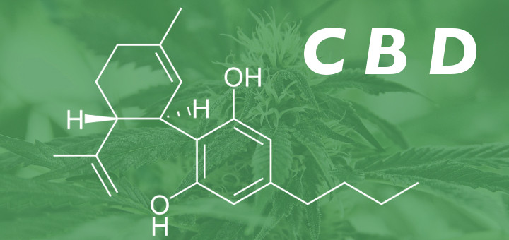 cbd-what-is-it