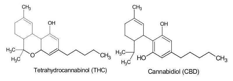 cbdmolecule